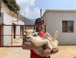 SPCA International Awards $100,000 Grant to Lebanon Animal Shelter