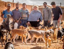 The City of Agadir: A model for animal welfare in Morocco