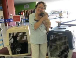 In Memory of Rita, a Fierce Advocate for Animals